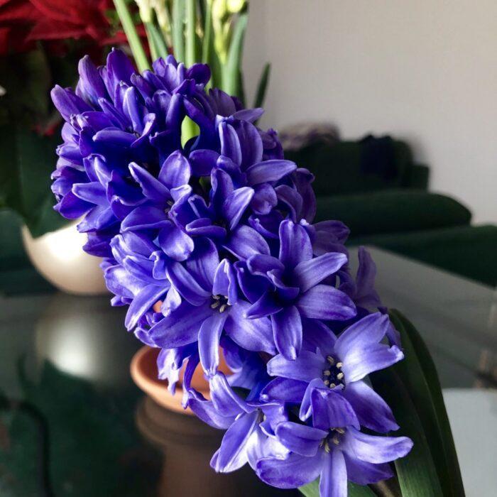 Мой осознанный март. Итоги 2019 года | Блог Радость в каждом дне