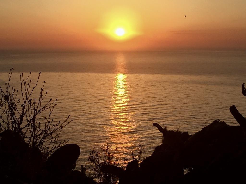 Моё идеальное утро | Блог Радость в каждом дне