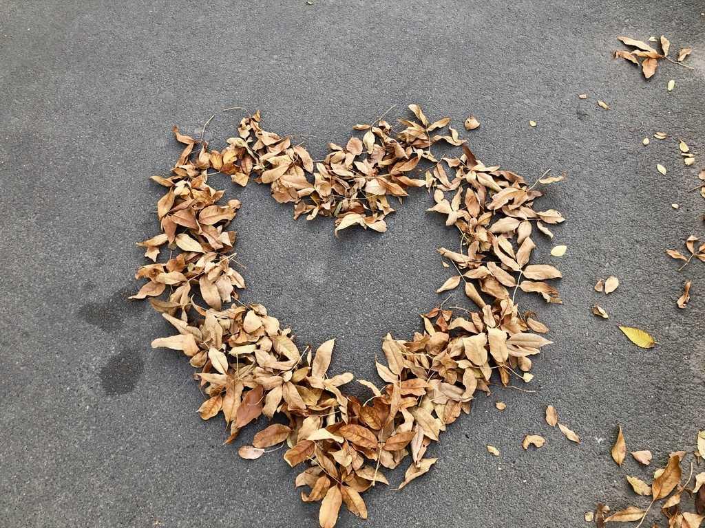 Мой осознанный октябрь. Итоги 2019 | Блог Радость в каждом дне