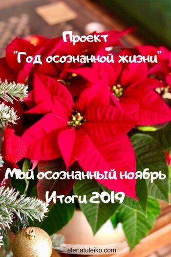 Мой осознанный ноябрь. Итоги 2019 | Блог Радость в каждом дне